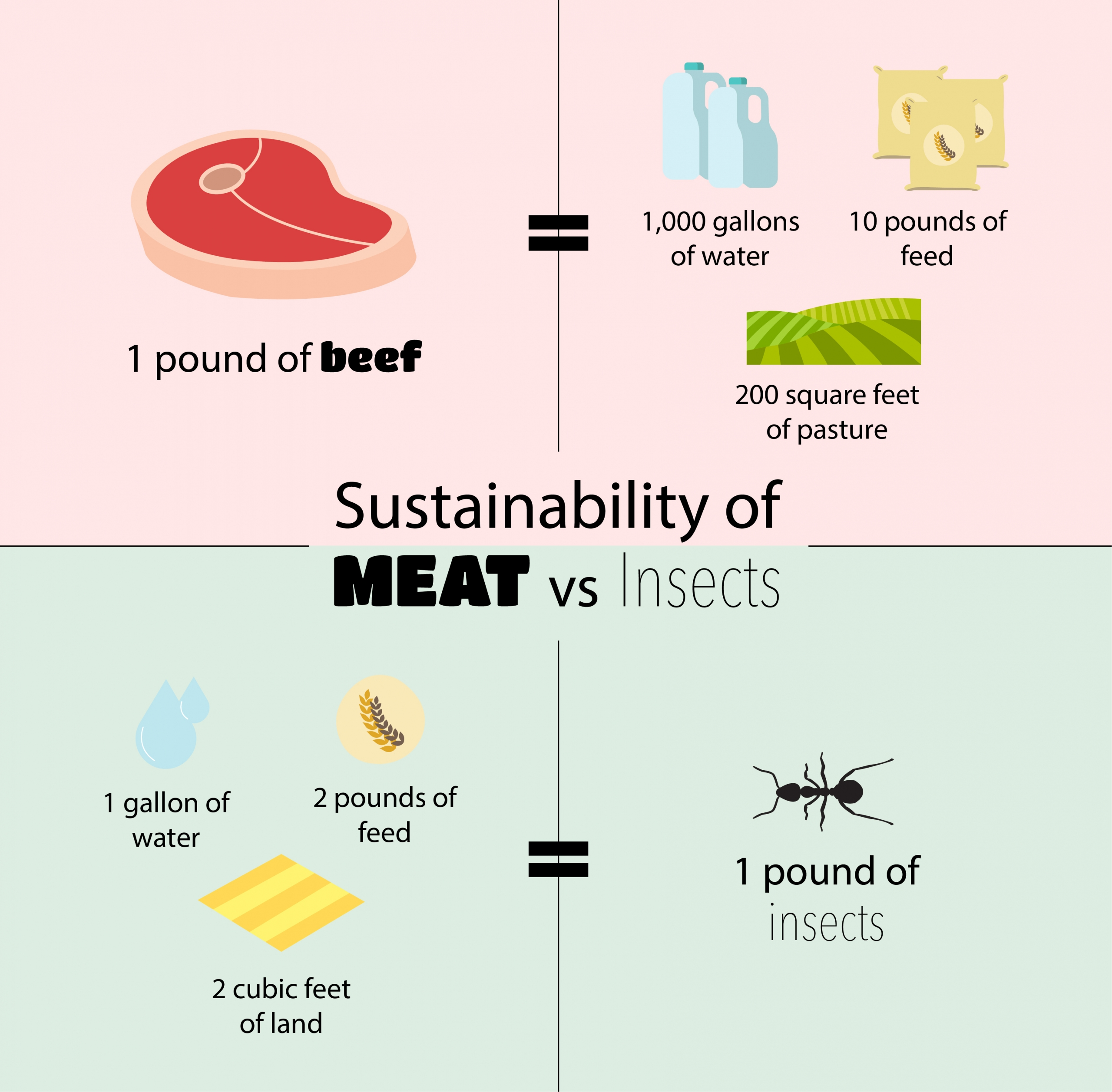 Infographic comparing the water, feed, and land needs of cattle against the same needs for bugs farming